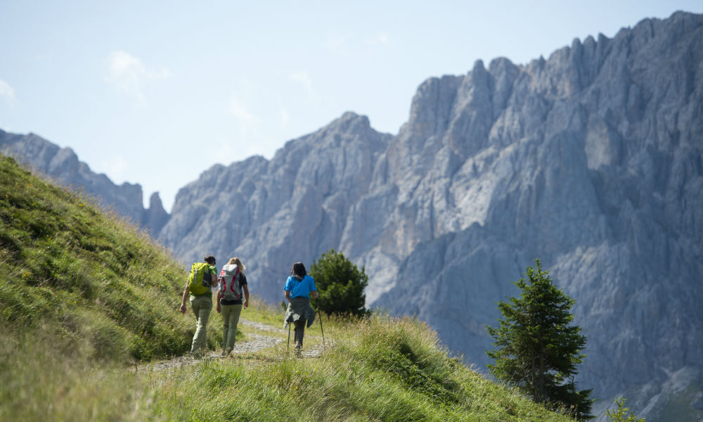 Hikes in the Dolomites. On the Plose